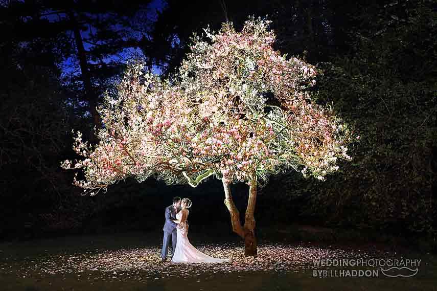 Rothley Court Hotel indoors night time magnolia tree